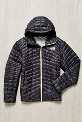 The North Face Thermoball Hoodie Jacket Grey