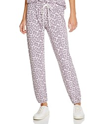 Soft Joie Nevaeh C Printed Sweatpants Soft Grey