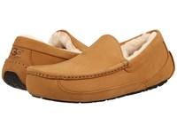Ugg Ascot Wheat Wheat Men's Slippers Tan