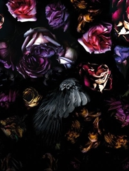 Visionnaire Flowers And Raven Wallpaper Luisaviaroma Luxury Shopping Worldwide Shipping Florence