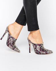 Truffle Collection Skye Point Heeled Mules Multi
