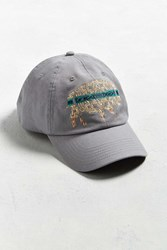 Pendleton Buffalo Baseball Hat Grey