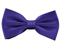 Double Two Plain Bow Tie Purple