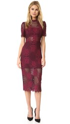 Alexis Delila Dress Burgundy Lace