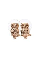 Forever 21 Owl Studs Gold