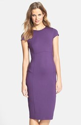 Petite Women's Felicity And Coco Seamed Pencil Dress Purple Pennant