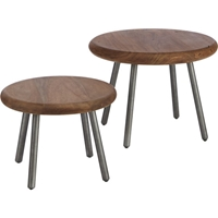 Wafer Tables Set Of Two In Accent Tables Cb2