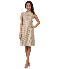 Adrianna Papell Directionals Netting Shimmer Inset Dress Champagne Women's Dress Gold