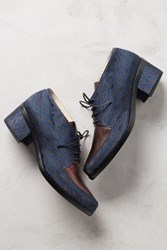Anthropologie Lenora Plaid Tessa Oxfords Bizanto Blue W Bronze