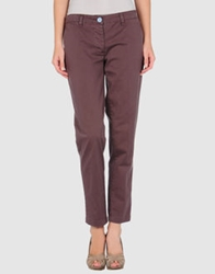 Shaft Casual Pants Light Brown