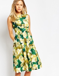 Emily And Fin Emily And Fin Lucy Printed Midi Skater Dress 901Green