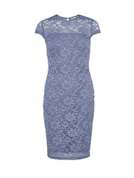 Gina Bacconi Round Neck Sparkly Frosted Lace Dress Blue