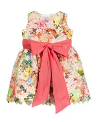 Helena Sleeveless Floral Lace A Line Dress Multicolor