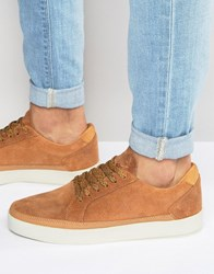 Boxfresh Civik Suede Trainers Tan