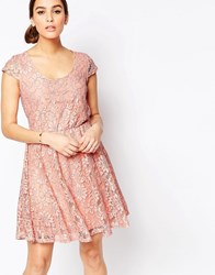 Pussycat London Skater Dress In Lace Nude