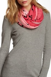 Leigh And Luca Classic Rectangle Fringe Scarf Pink