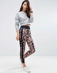 Asos Leopard Print Leggings With Side Stripe Print Multi