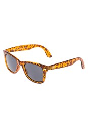 Cheapo Noway Sunglasses Turtle Brown Black