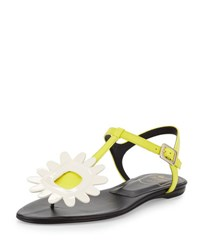 Roger Vivier Thong Chips Flower Flat Sandal White Yellow White Ylw