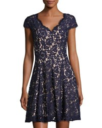Eliza J Cap Sleeve Fit And Flare Lace Dress Navy