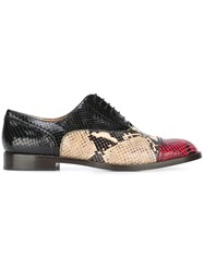 Marc Jacobs 'Clinton' Oxford Shoes Multicolour