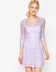 Asos Mesh Skater Dress With Embroidered Border Lilac Purple