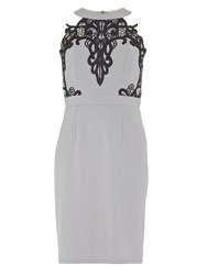 Dorothy Perkins Showcase Halter Neck Lace Bodycon Dress Grey