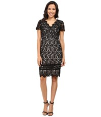 Nue By Shani Lace Dress With Trim Detail Black Nude Women's Dress Multi