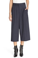 Tibi Women's 'Delmont' Pinstripe Pleated Crop Pants Navy Multi