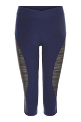 Topshop Linear Mesh Insert Capri Leggings By Ivy Park Navy Blue