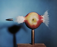 Harold Edgerton The Art And Science Of Photography Artnet Insights