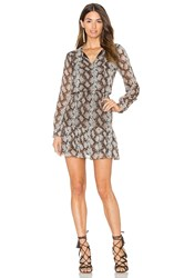 Greylin Sellia Pintucked Dress Taupe