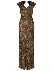 Phase Eight Collection 8 Alexi Sequin Full Length Dress Bronze
