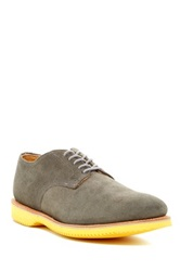 Walk Over Walkover Chase Suede Blucher Gray