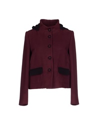 Hanita Jackets Deep Purple
