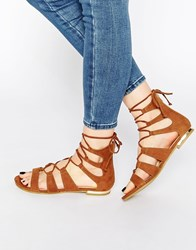 Truffle Collection Gladiator Flat Sandals Tan Suede Black