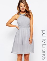 Little Mistress Petite Skater Dress With Embellished Strap Grey