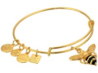 Alex And Ani Charity By Design Bumble Bee Bracelet Rafaelian Gold Bracelet