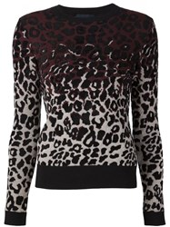 Lanvin Leopard Intarsia Sweater Pink And Purple