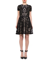 Alexia Admor Lace Fit And Flare Dress Black Nude
