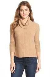 Petite Women's Halogen Cashmere Mixed Rib Turtleneck Heather Camel