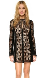 Nanette Lepore Lacy Lady Dress Black