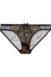 Agent Provocateur Iana Metallic Lace And Tulle Briefs Black
