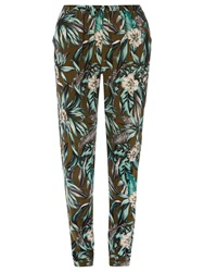Dorothy Perkins Tall Fern Printed Joggers Green