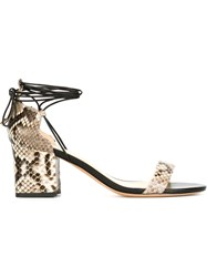Alexandre Birman Python Print Sandals Black