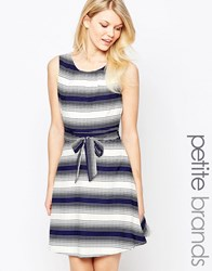 Yumi Petite Skater Dress In Stripe Navy White