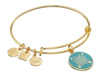 Alex And Ani Charity By Design Arrows Of Friendship Charm Bangle Shiny Gold Finish Bracelet