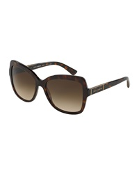 Dandg D And G Acetate Butterfly Sunglasses Brown