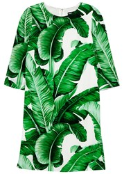 Dolce And Gabbana Palm Tree Print Crepe Mini Dress Green