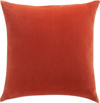 Cb2 Leisure Burnt Orange 23'' Pillow With Feather Insert